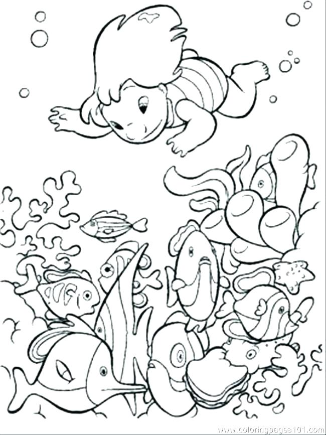 Ocean Ecosystem Drawing at GetDrawings com   Free for