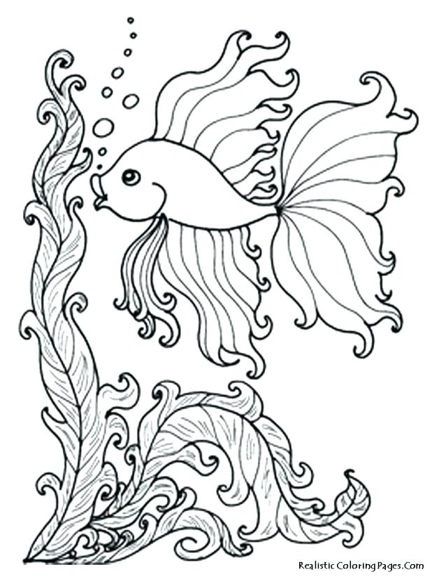 618x824 Ocean Fish Coloring Pages Free Download