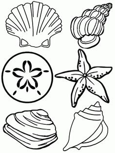 Ocean Plants Drawing at GetDrawings.com | Free for personal use ...
