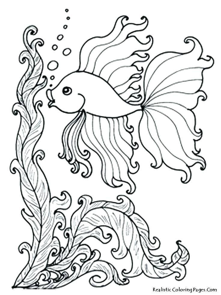 736x981 Ocean Coloring Pages Ocean Scene Coloring Pages Ocean Coloring