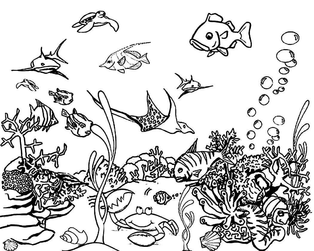 1050x840 Ocean Plants Coloring Pages
