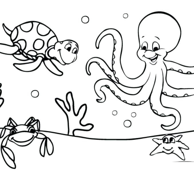 678x600 Coloring Pages Ocean Ocean Coloring Page Ocean Coloring Pages