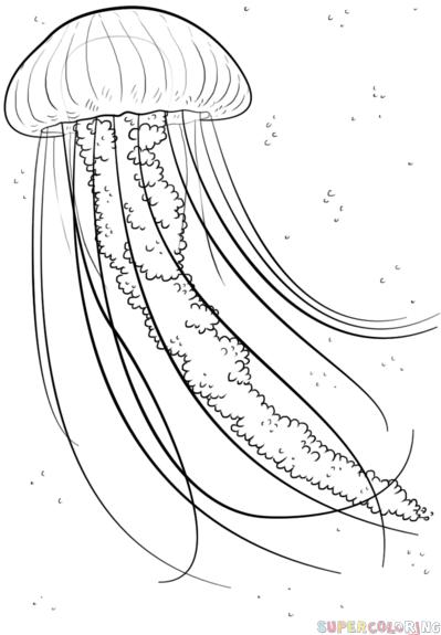 399x575 Drawn Ocean Line Drawing