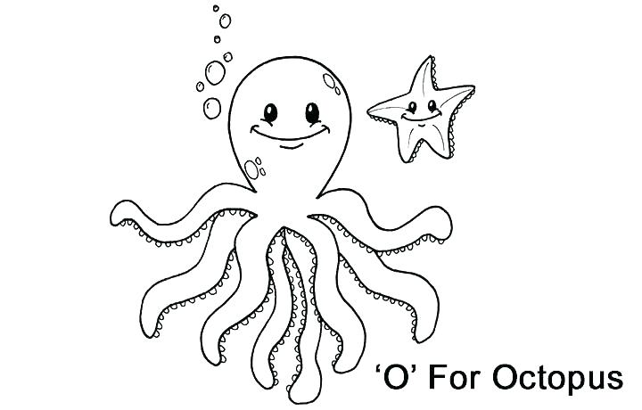 720x460 Octopus Color Page Octopus Color Page Octopus Coloring Pages Photo