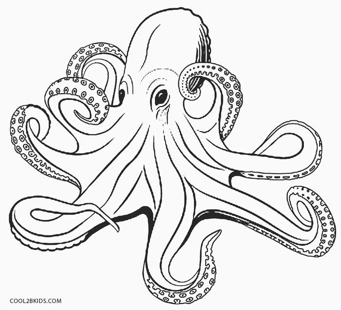 700x636 Octopus Coloring Pages Printable For Cure Draw Print Printable