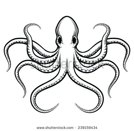 450x440 How To Draw Octopus Draw An Octopus Steps 8 And 9 Octopus