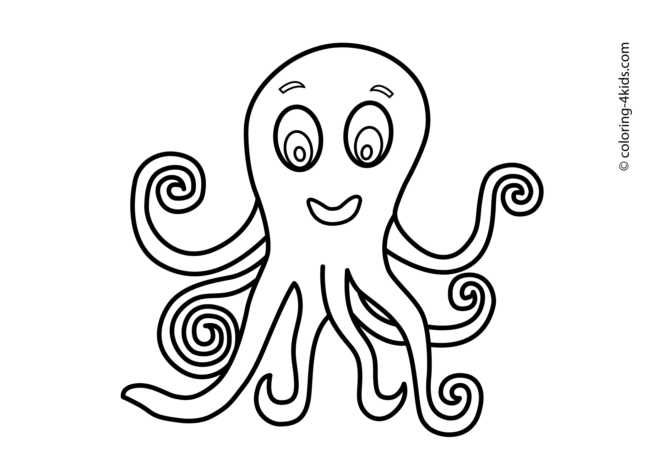 Octopus Drawing Pictures At Getdrawings Com Free For Personal Use