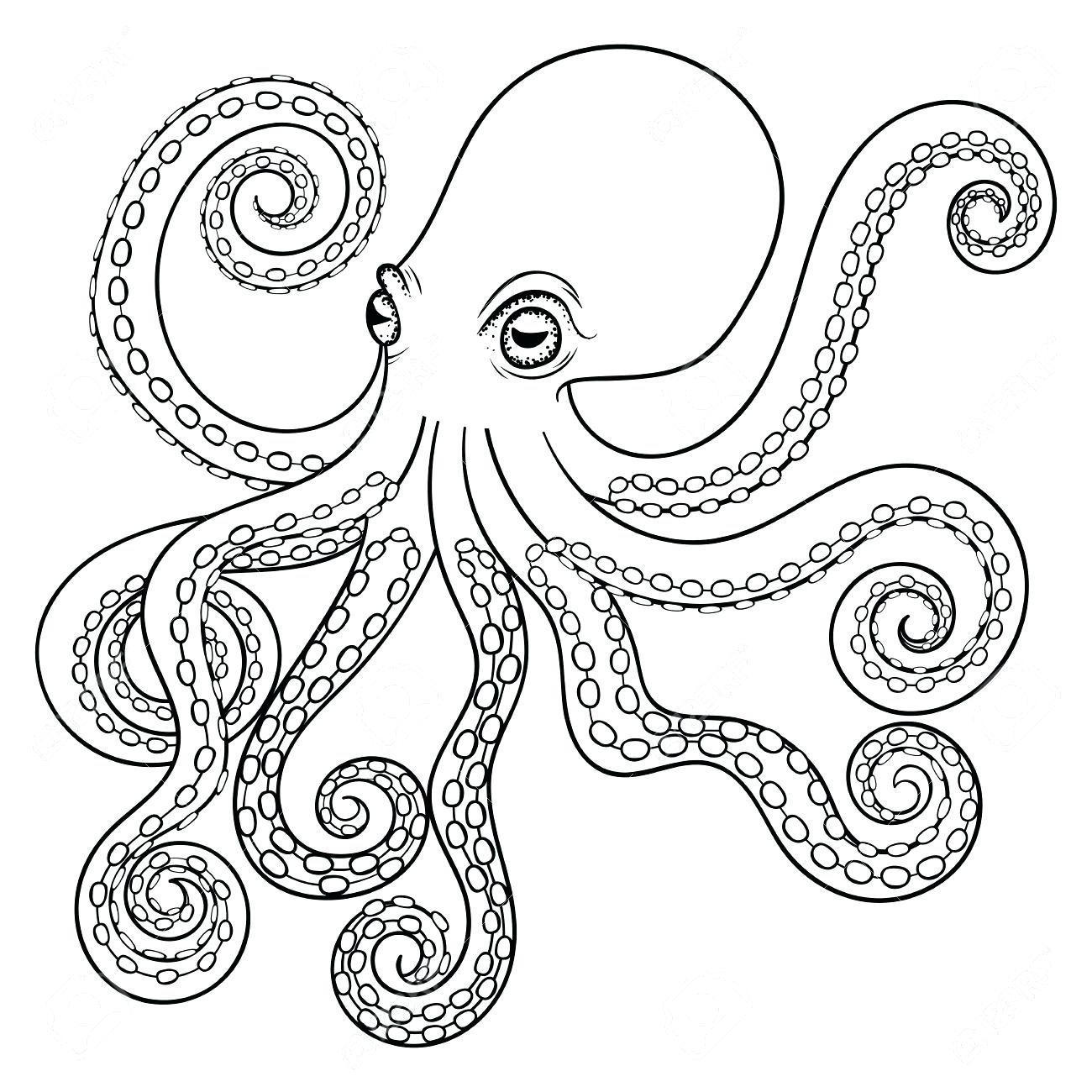 1300x1300 Coloring Coloring Pages Octopus