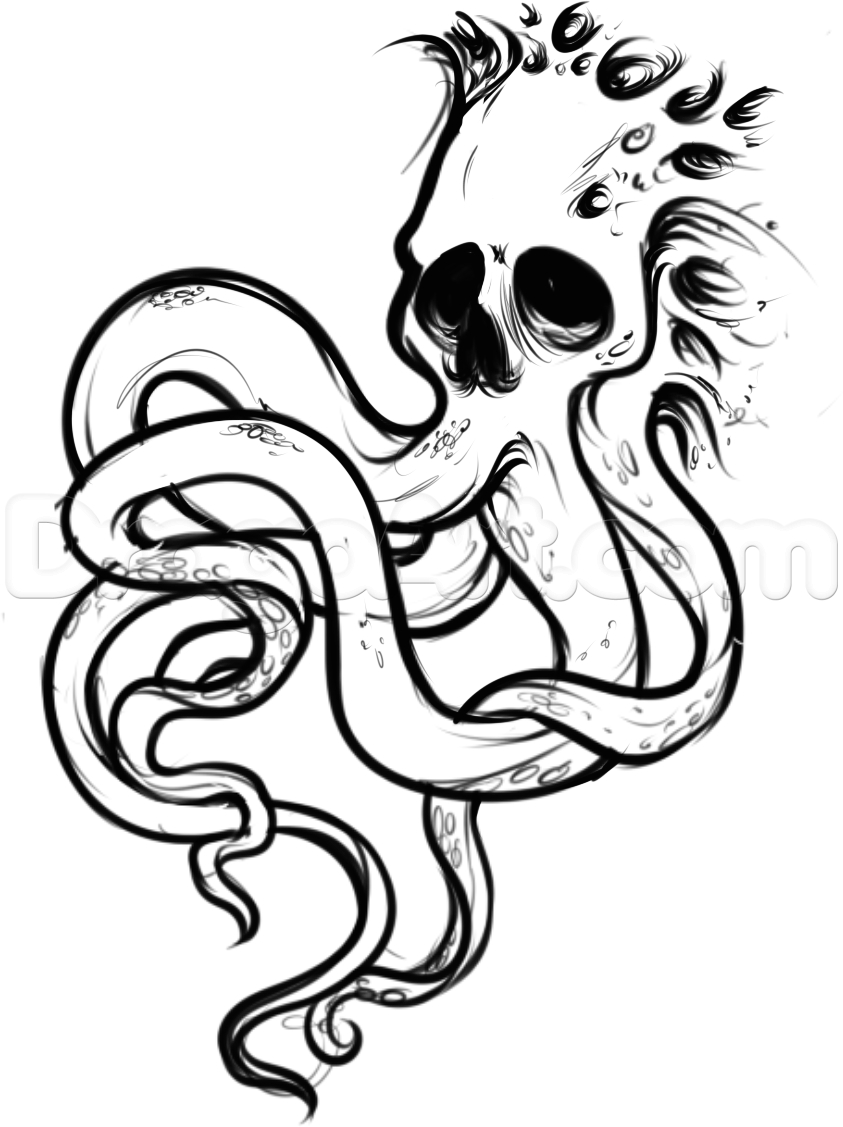 843x1127 Drawing Of A Octopus How To Draw An Octopus Skull Tattoo, Stepstep