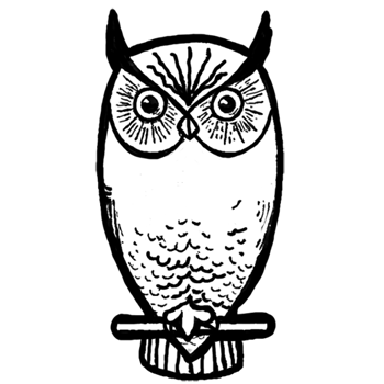 350x350 How To Draw Owls With Step By Step Drawing Lesson