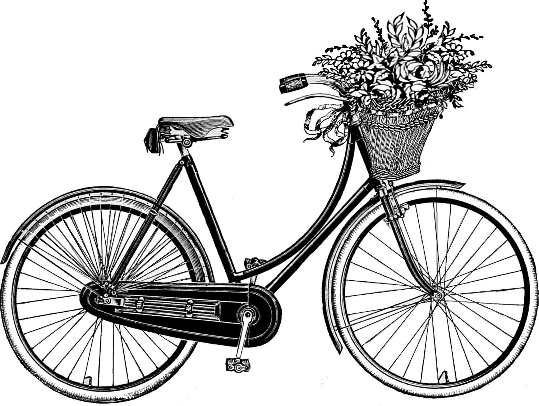 1500x1127 Vintage Bicycle With Basket Drawing Bikes Vintage
