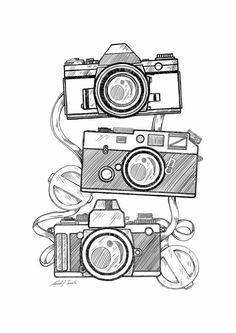 236x333 Vintage Cameras On Behance Office Vintage Cameras