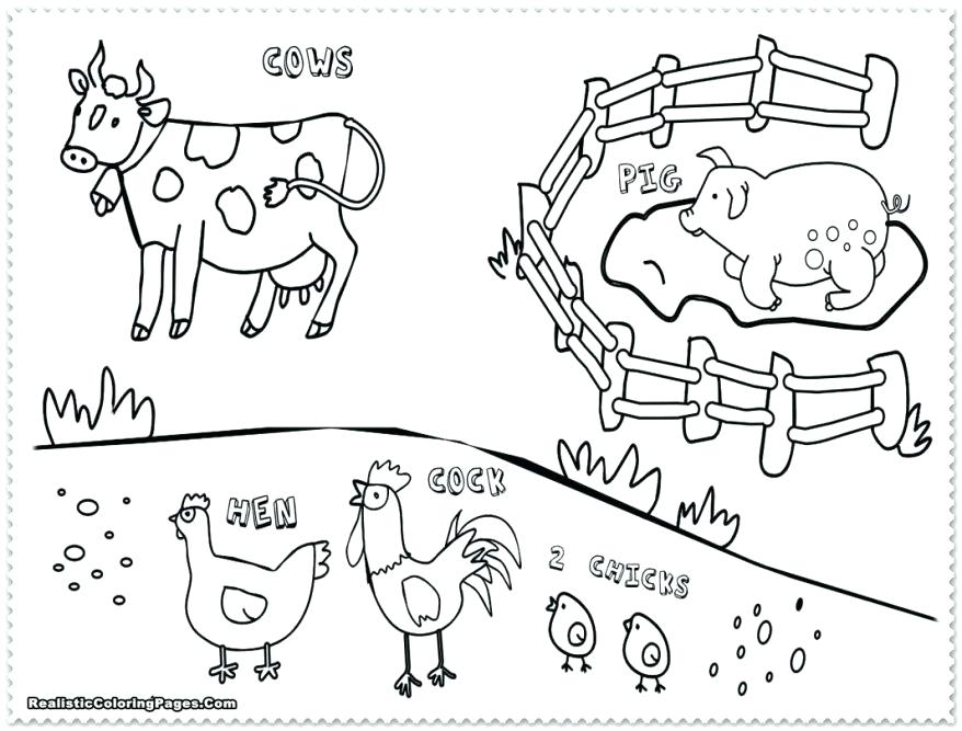 878x667 Printable Farm Coloring Pages On Animal