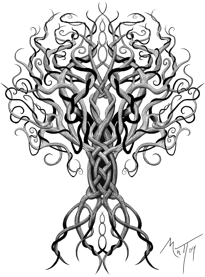 Old Tree Drawing