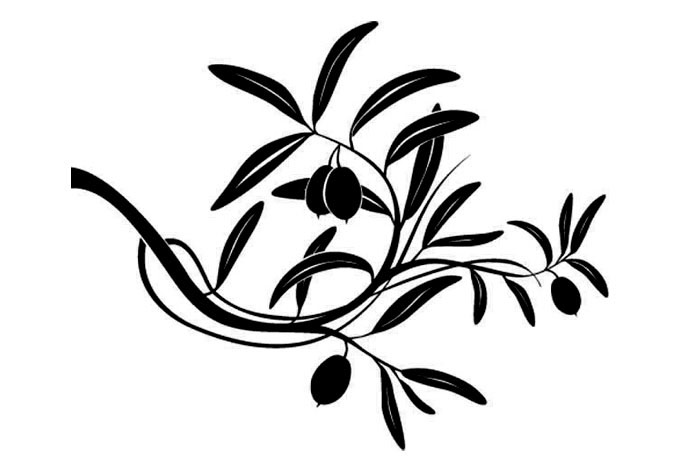 680x472 Image Of Olive Tree Clipart
