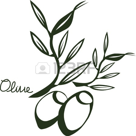 448x450 Vector Drawing Sketch Of Olive Tree Branch Royalty Free Cliparts