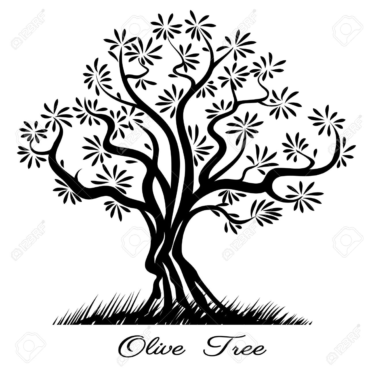 1300x1300 Olive Tree Silhouette. Sketch Wood Painted Black Lines. Vector