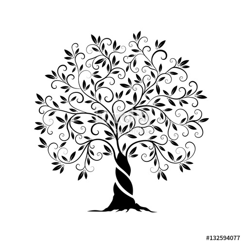 500x500 Olive Tree Outline Curl Silhouette Stock Image And Royalty Free
