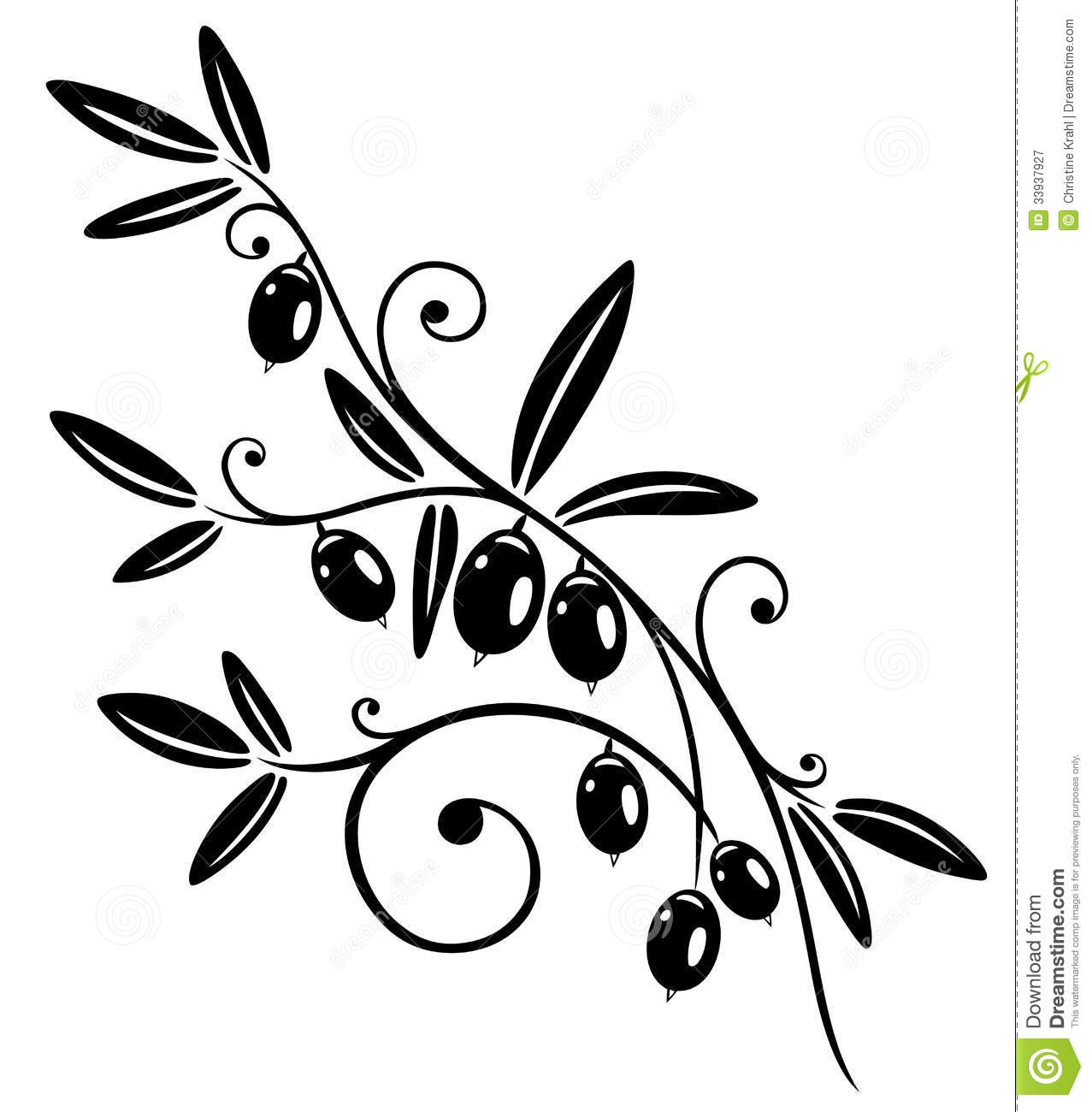 1277x1300 Olive Tree Vector Art