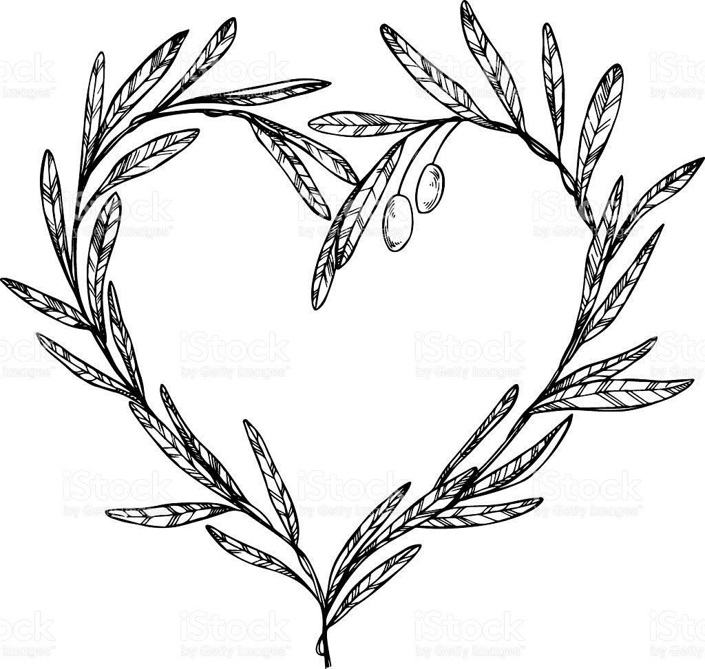 1024x972 Drawn Branch Olive Branch