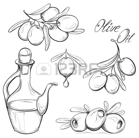 450x447 Hand Drawn Olive Set. Olive Oil And Olive Branch. Black And White