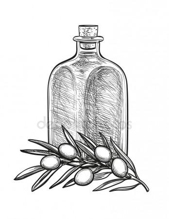 348x450 Bottle Of Olive Oil And Olive Branch. Stock Vector Alhontess