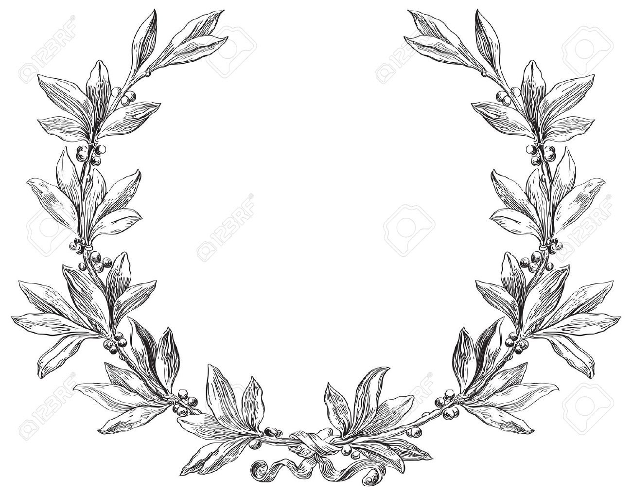 Olive Wreath Drawing