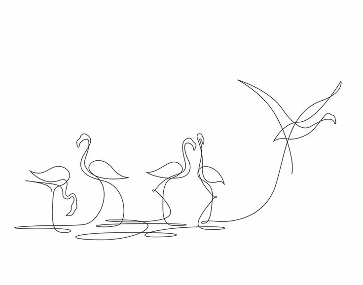 736x578 Image Result For Single Line Drawing Single Line Drawing