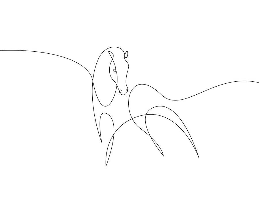 900x707 New Series Of Animals In One Line By Differantly Fubiz Media