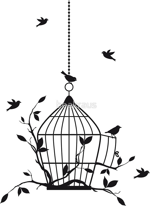 584x800 Free Birds With Open Birdcage Stickers By Beakraus Redbubble