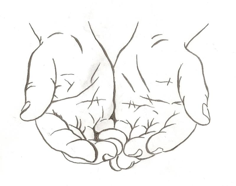 800x630 Open Hands Clipart