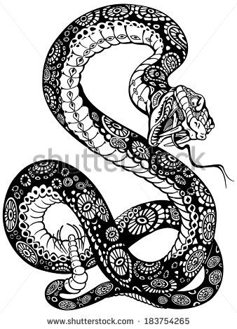 338x470 Snake Open Mouth Drawing