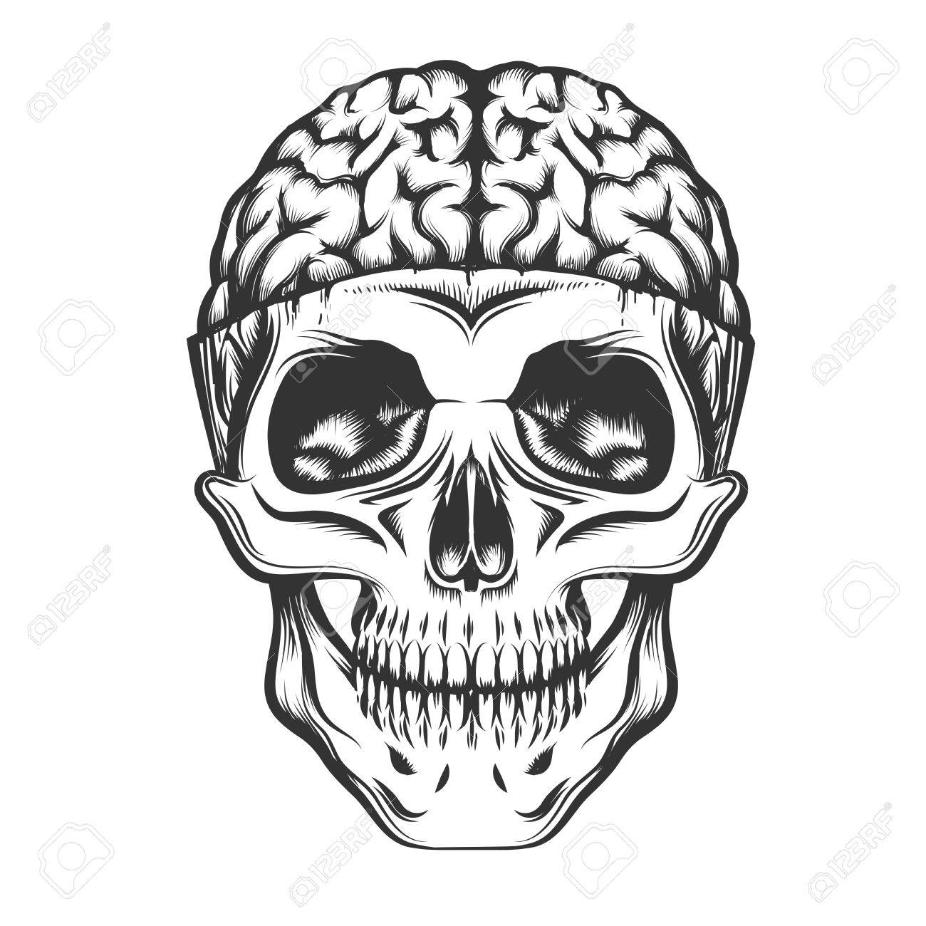 1300x1300 Human Skull With Open Brain. Vector Illustration In Tattoo Style
