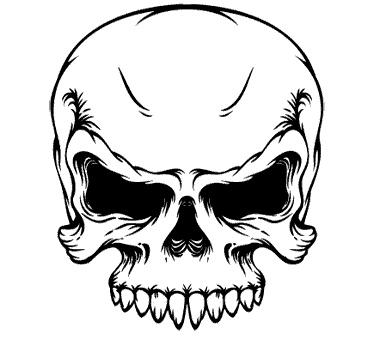 380x352 60 Best Skull Images On Skulls, Skull Art And Skeletons