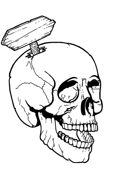 513x679 Image Result For Skulls 34 View Awards Designs
