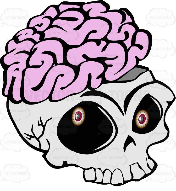 736x800 Cartoon Skull Open Showing Exposed Brain Overflowing Missing Lower