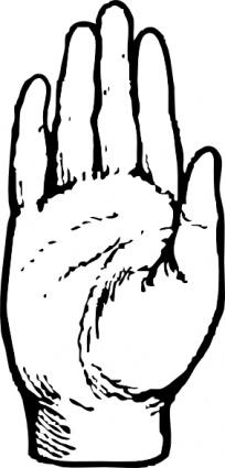 204x425 Hand Palm Outline Clipart Panda