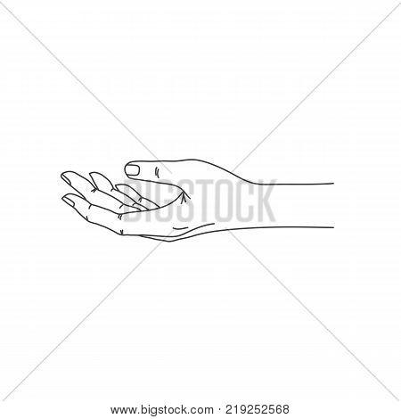 450x470 Open Palm Images, Illustrations, Vectors