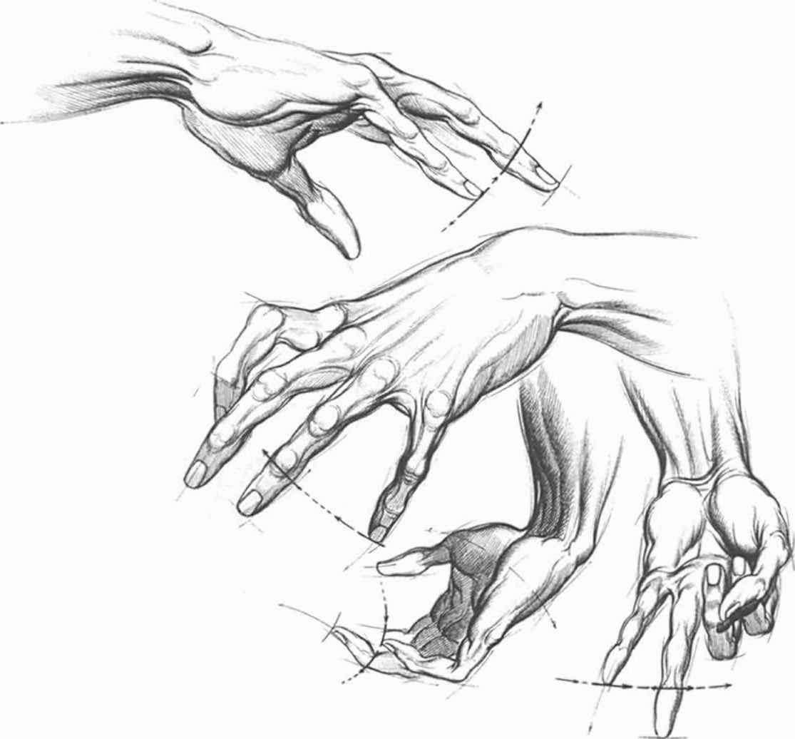 Open Palm Hand Drawing at GetDrawings.com | Free for personal use ...