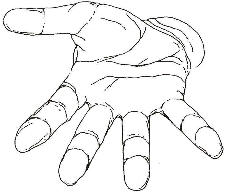 800x664 Open Hands Clipart