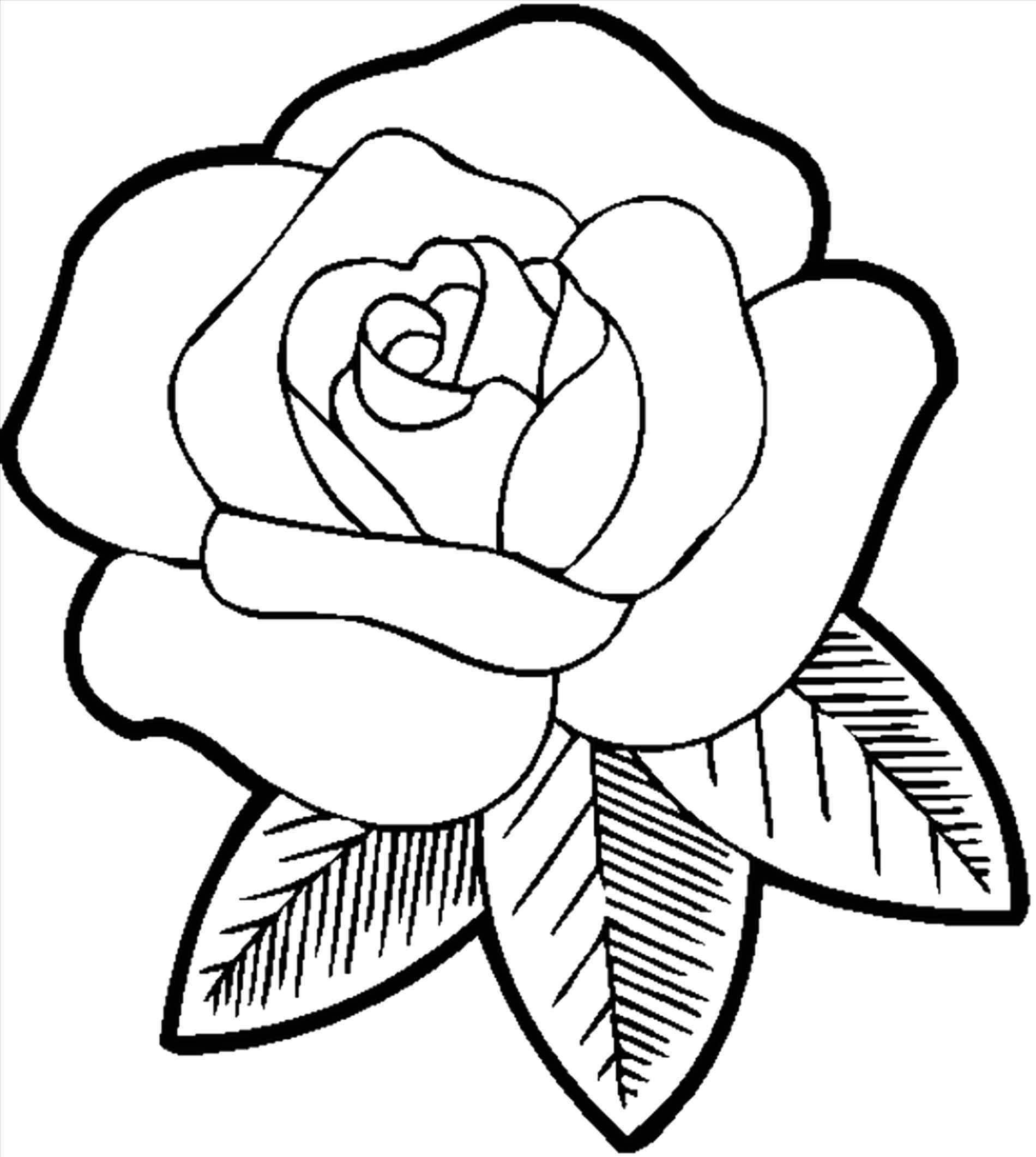 1900x2122 Flowers Very Easy In Drawing How To Draw A Rose Easy