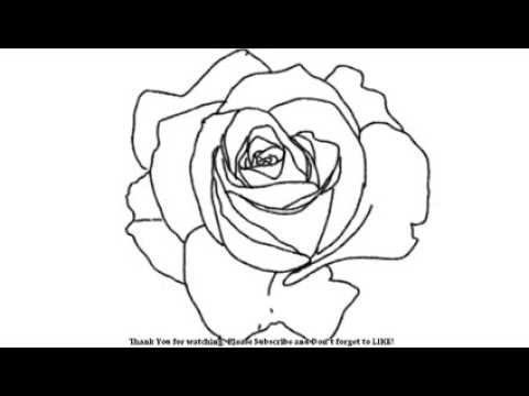 480x360 How To Draw Open Rose Flower Yzarts Yzarts