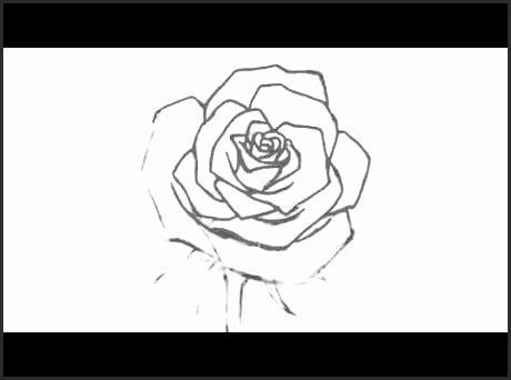 460x342 Open Rose Drawing Ifafi Lovely How To Draw An Open Rose