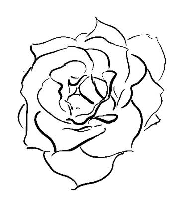 382x400 Sketch A Rose In Digital Ink Open Rose, Digital Ink And Sketches