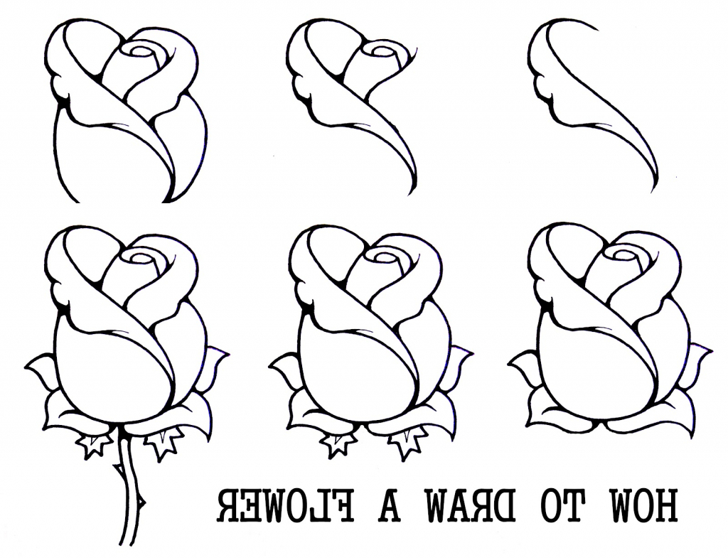 1024x788 Step By Step Rose Drawing How To Draw An Open Rose