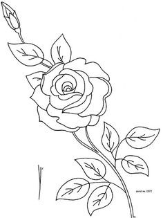 236x315 How To Draw Roses Opening In Full Bloom Step By Step Drawing