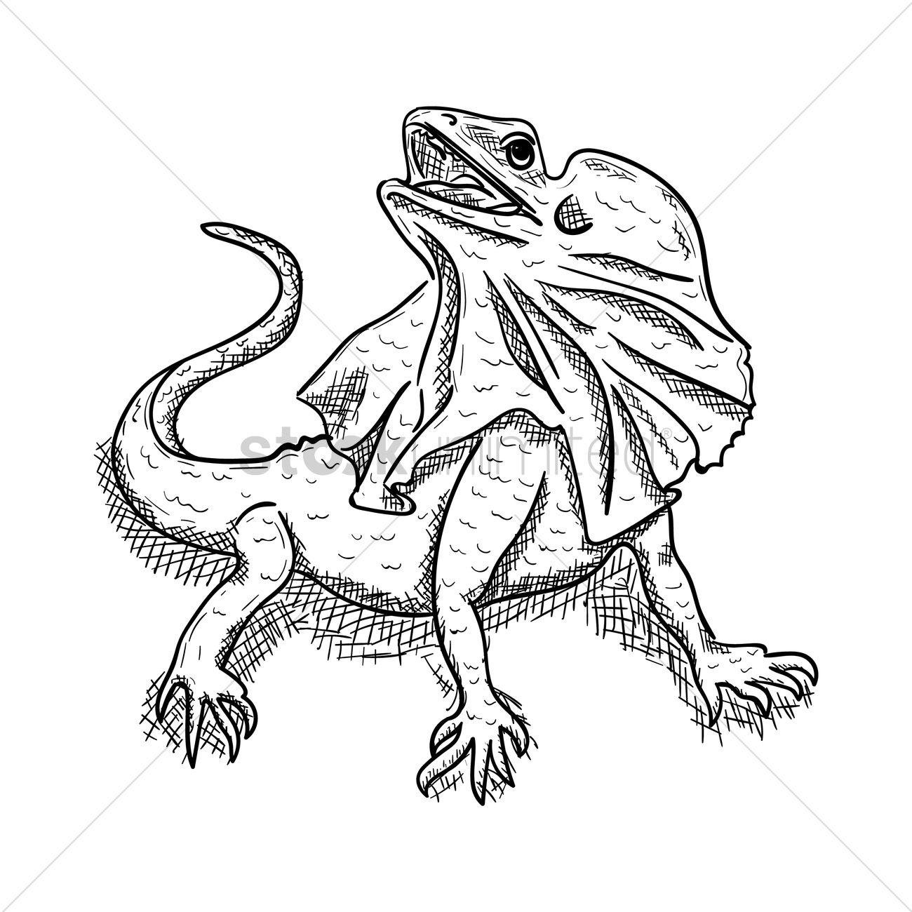 1300x1300 Frilled Lizard Vector Image