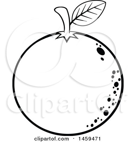 450x470 Clipart Of A Black And White Navel Orange Fruit