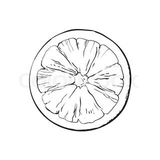320x320 Half Of Ripe Pink Grapefruit, Red Orange, Hand Drawn Sketch Style