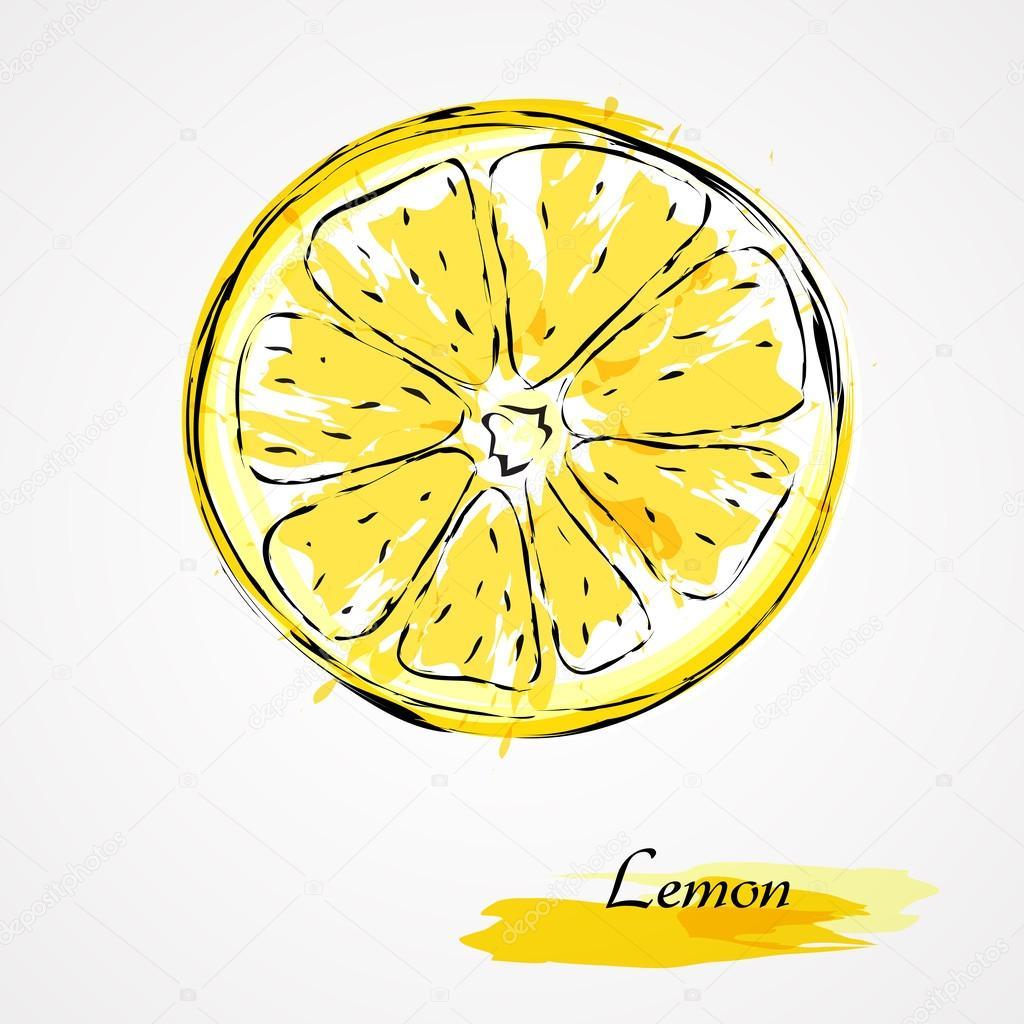 1024x1024 Lemon Slice Stock Vector Kg.karolina